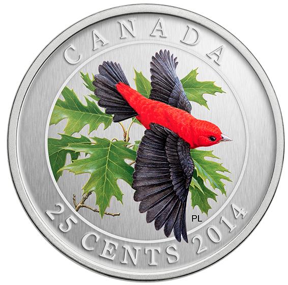 Красно-черная пиранга