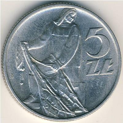 Монета 5 злотых 1960 польша стоимость хоккей с шайбой чемпионат
