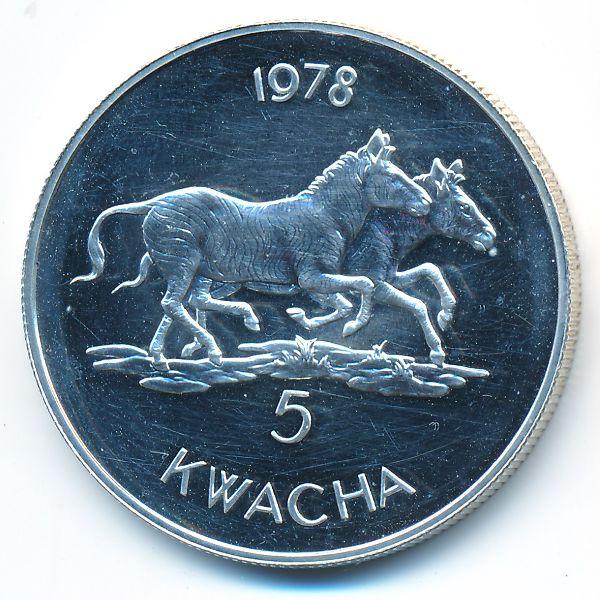 Малави, 5 квача (1978 г.)