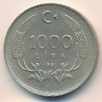 Турция, 1000 лир (1991 г.)