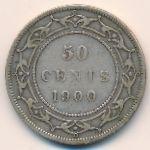 Ньюфаундленд, 50 центов (1899–1900 г.)