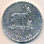Замбия, 5 квача (1979 г.)