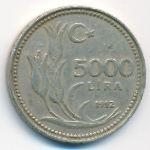 Турция, 5000 лир (1992 г.)